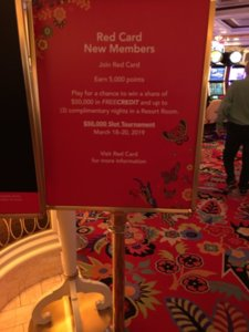 Woo Hoo! thecarve is on Spring Break! (Live @ Wynn, Mar  11-14